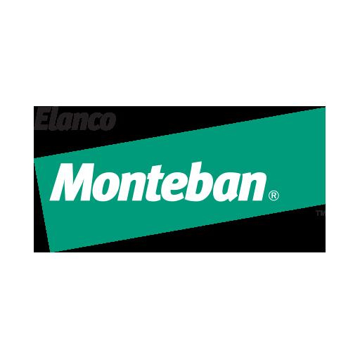 Monteban™ 100 (narasin)