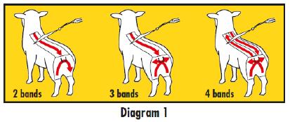 Clik Spray On Diagram1