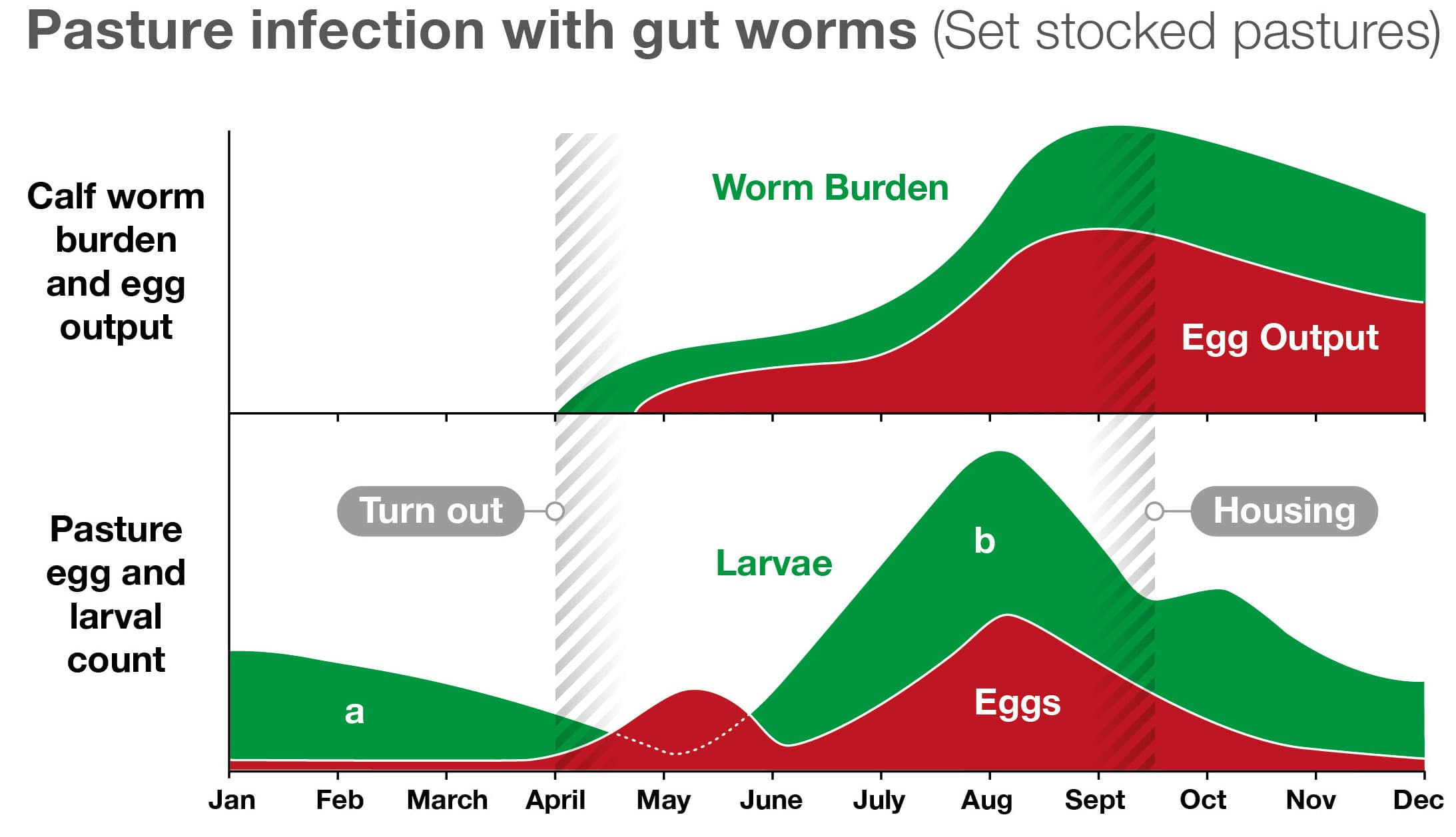 Pasture Infection with Gut Worms