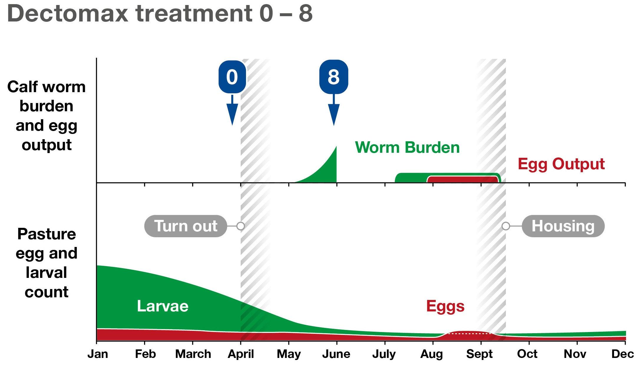 Gut Worm Burden after Dectomax Treatment