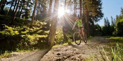 Radfahren und Biken in Ihrem Sommerurlaub in den Bergen in Zauchensee © zauchensee.com