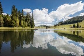 Naturpark-Almenland-Teichalm © Oesterreich-Werbung Foto Harald Eisenberger
