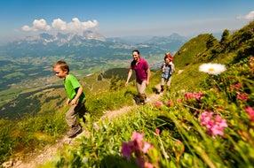 Panoramawanderung-am-Kitzbueheler-Horn © Franz Gerdl