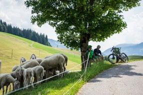 Hopfgarten-im-Brixental © Tirol-Werbung Fotograf Peter Neusser