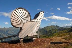 Riesneralm-bergbahnen-tierholz-park-sommer © Riesneralm.at