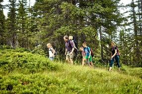 Familienwanderung auf Tillys Waldpfad © MAYA Inspiranto (Tourismusverband Rauris)