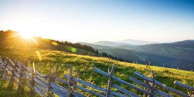 Schweiger_Pauschale_Goldener_Herbs © almenland Foto Herbst