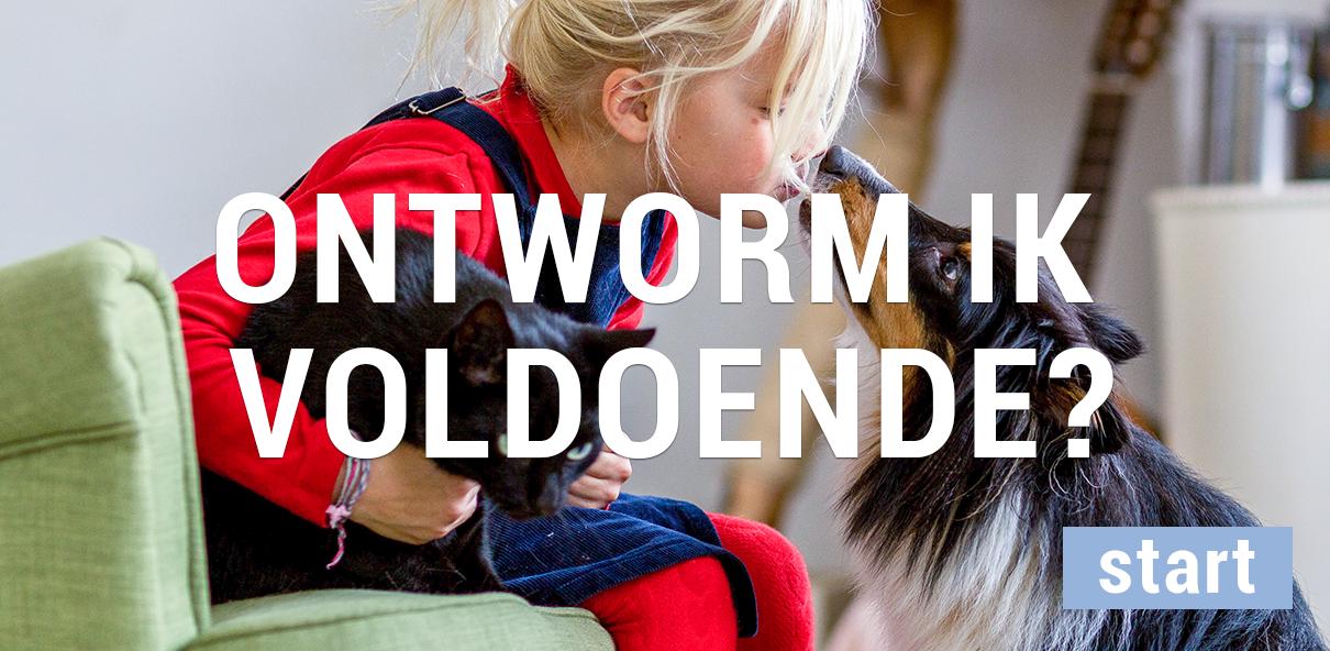 Check het risico op wormen bij uw hond of kat