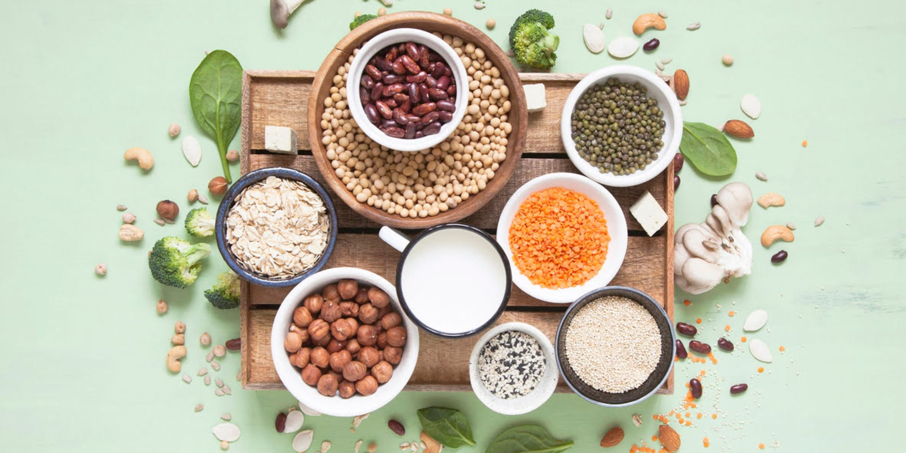 HC Inisder Insights - Talent Trends in Plant Protein