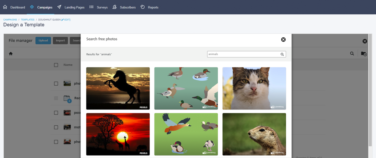 Choose from a selection of free images