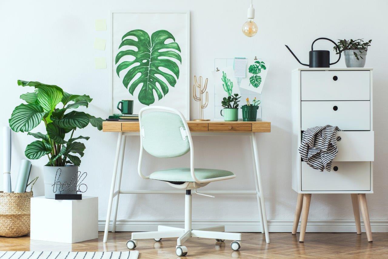 Vibrant Interior Image