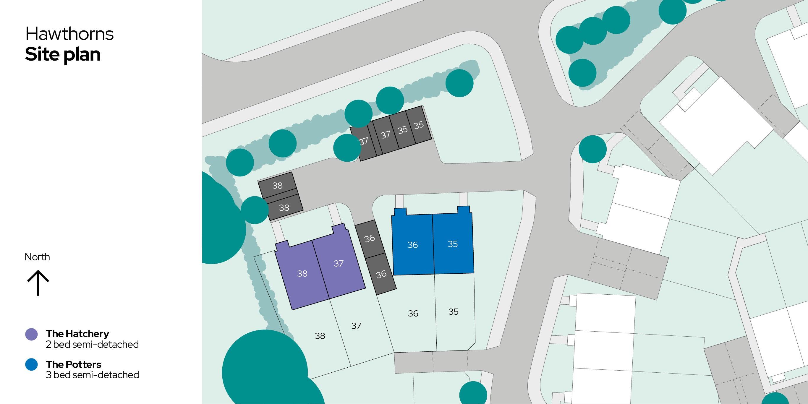 Hawthorns image of site plan