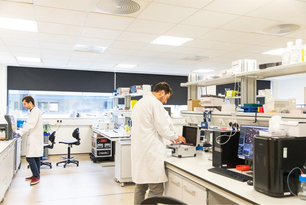 COVID-19 nanoMIP development lab.jpg