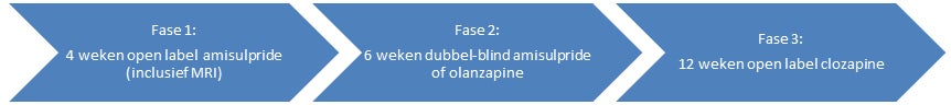 De verschillende fases waarin de OPTiMiSE studie was onderverdeeld.