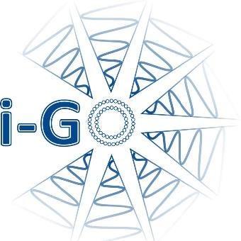 logo i-GO studie