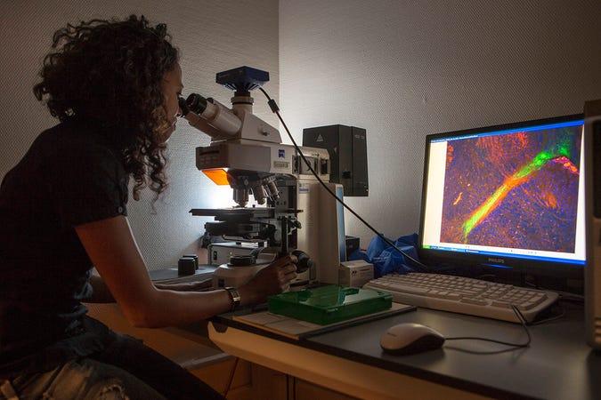 Afbeelding onderzoeker achter microscoop