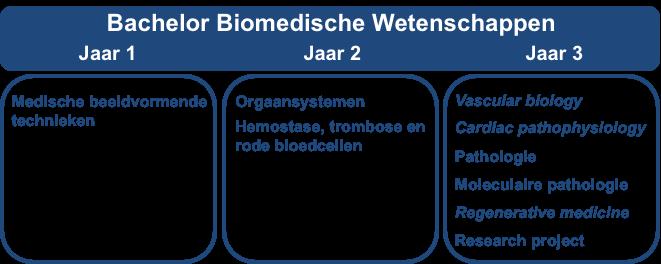 Overzicht bachelor biomedische wetenschappen