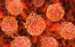 kankercel prostaatkanker umc utrecht
