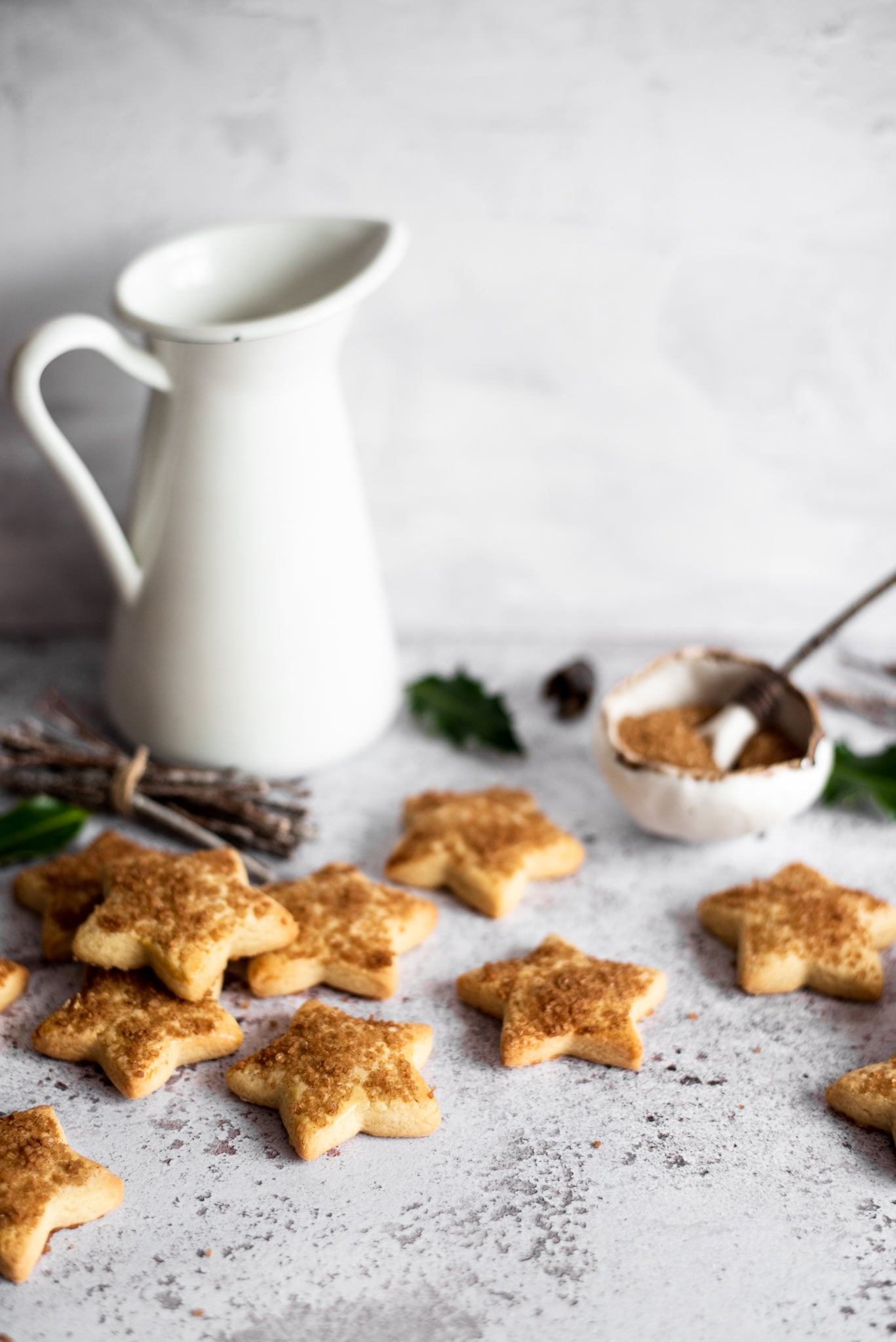 Swiss-Christmas-Biscuits-WEB-RES-7.jpg
