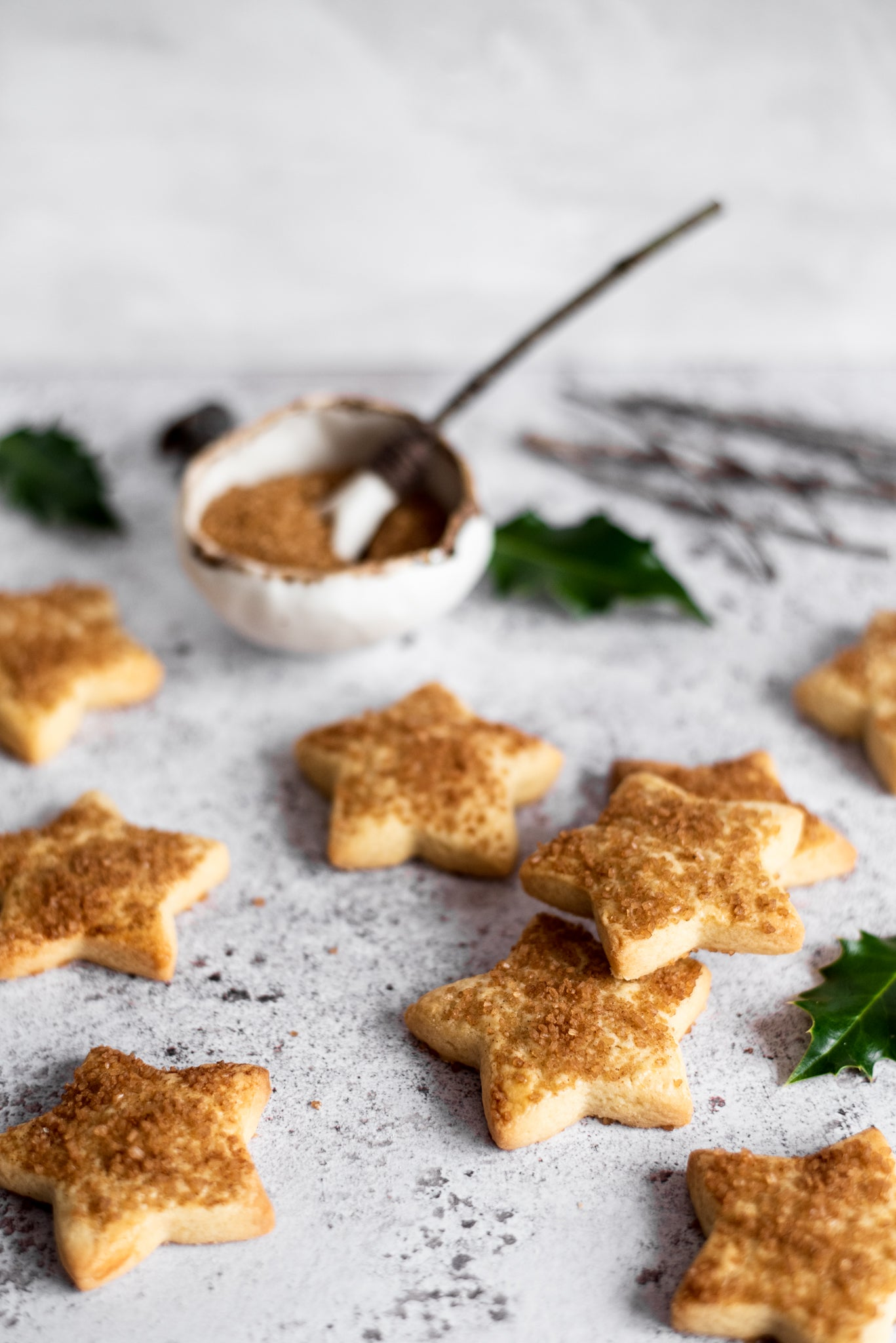 Swiss-Christmas-Biscuits-WEB-RES-9.jpg