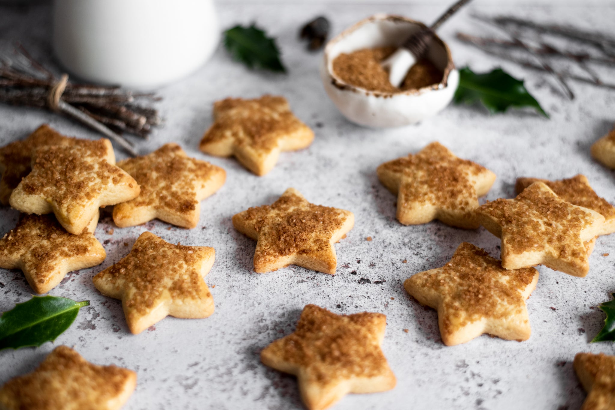 Swiss-Christmas-Biscuits-WEB-RES-8.jpg