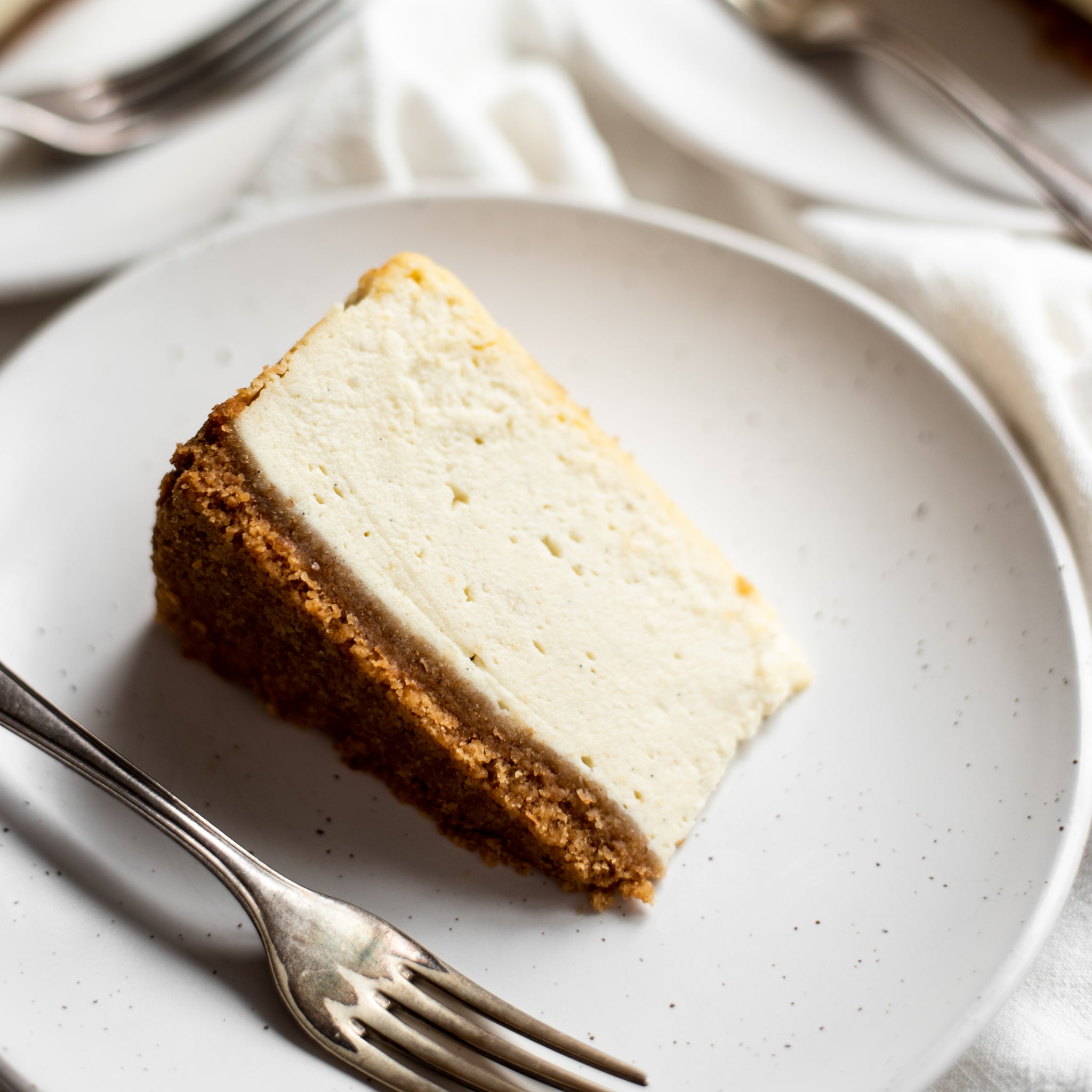 Baked-Cheesecake-SQUARE-1.jpg