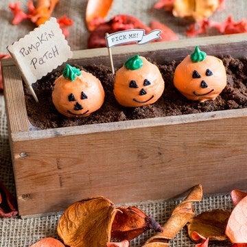 pumpkin cake pops in a row