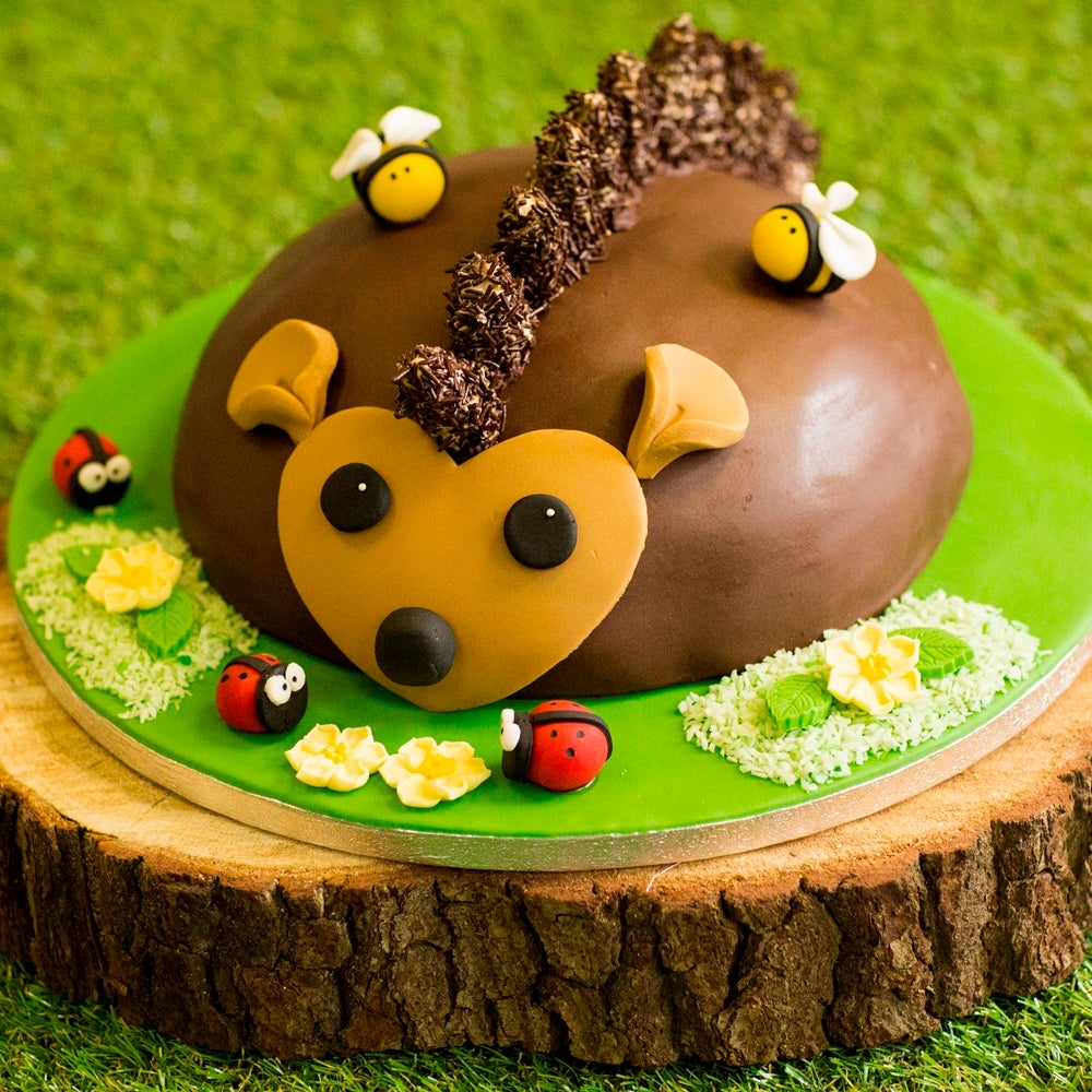 1-Hedgehog-Cake-WEB.jpg