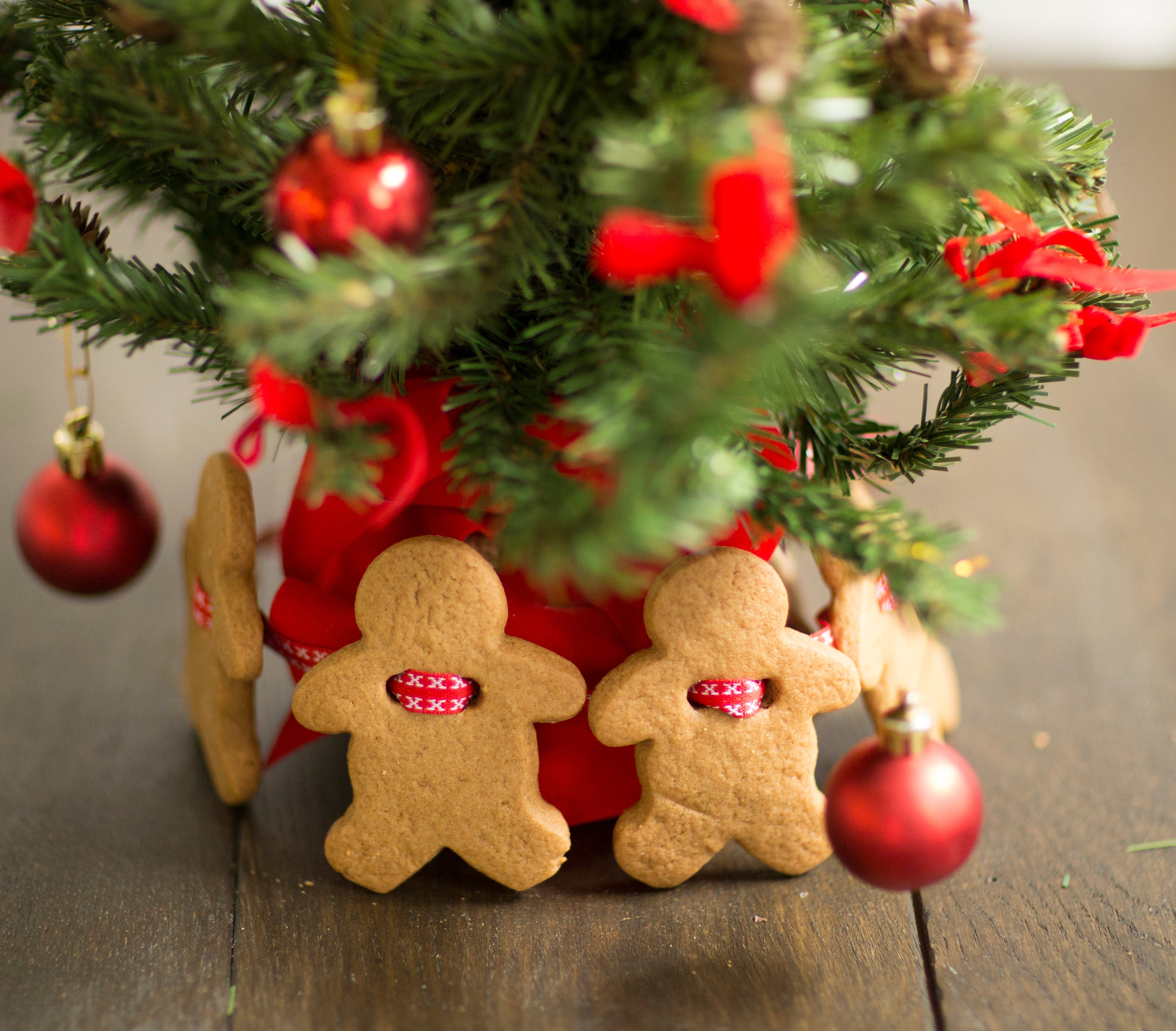 Gingerbread Man stood upright against a christmas tree