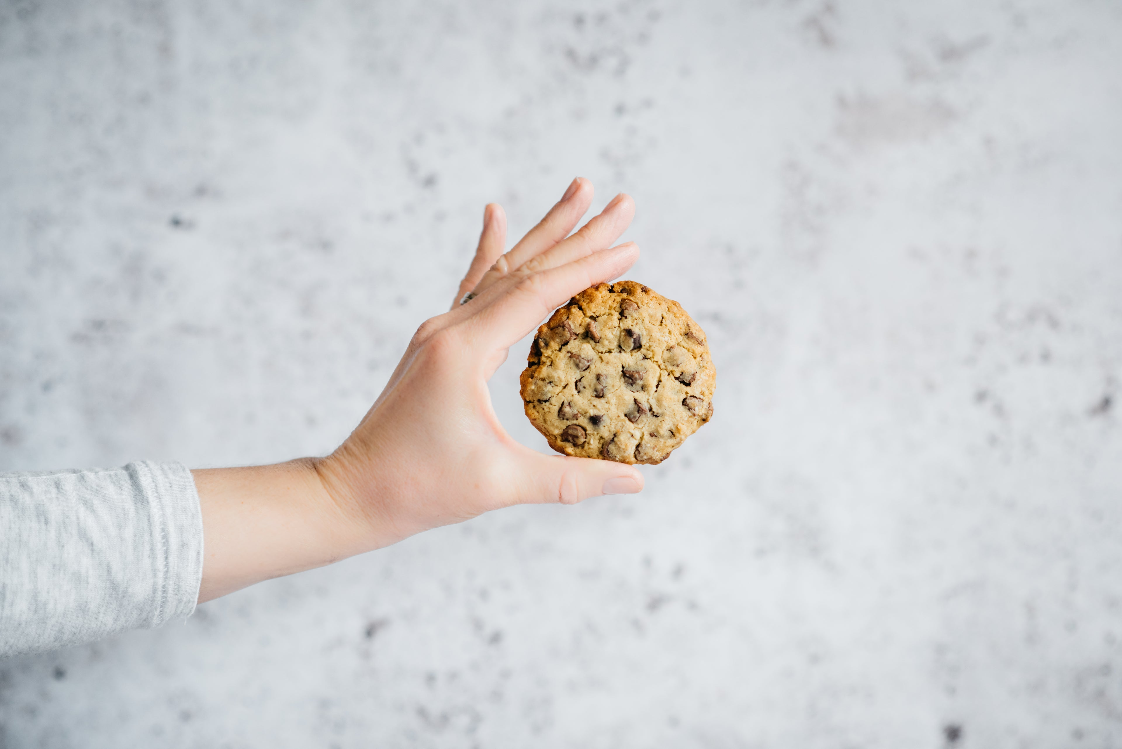 Hand holding a single chocolate chip cookie