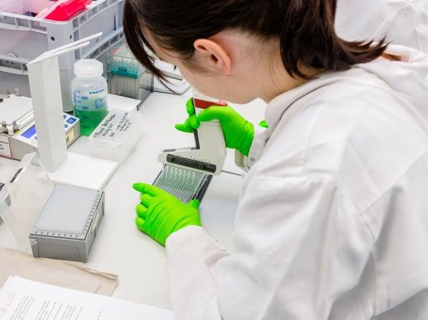 Pipettiervorgang im DKMS Labor