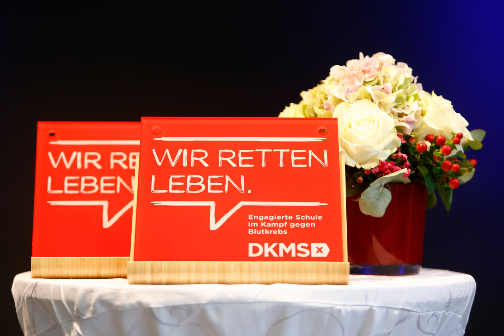 Das DKMS Schulsiegel