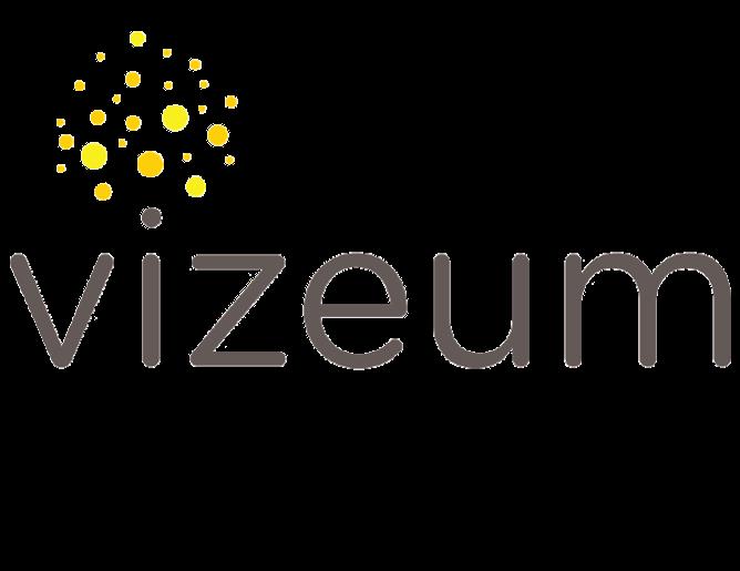 Vizeum Logo