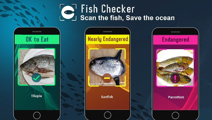 Fish Checker: Scan the Fish, Save the Ocean