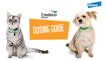 Credelio Cat and Dog Dosing Guide