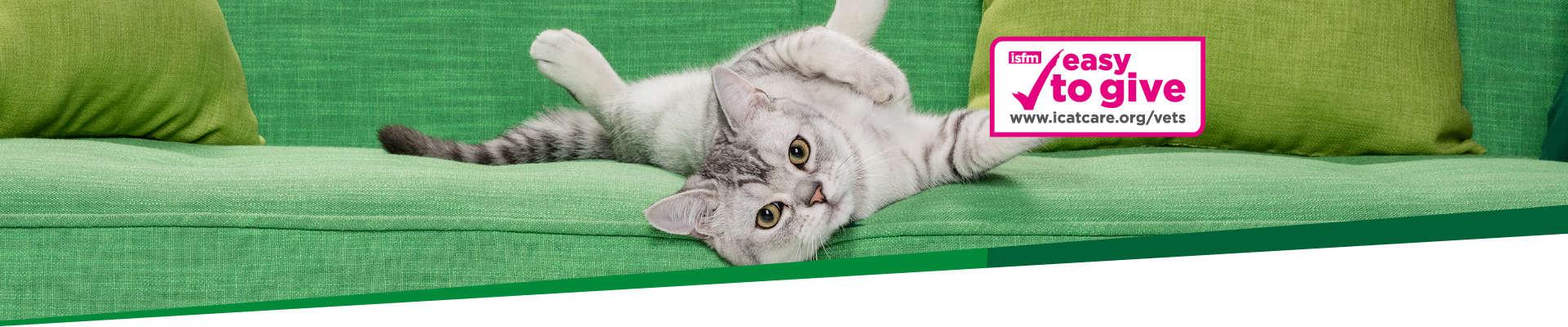 Credelio-Website-Cat-Header 1920x400L