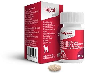 GALLIPRANT Group BottleBoxPill 60mg UK 02-11-2018 360x310