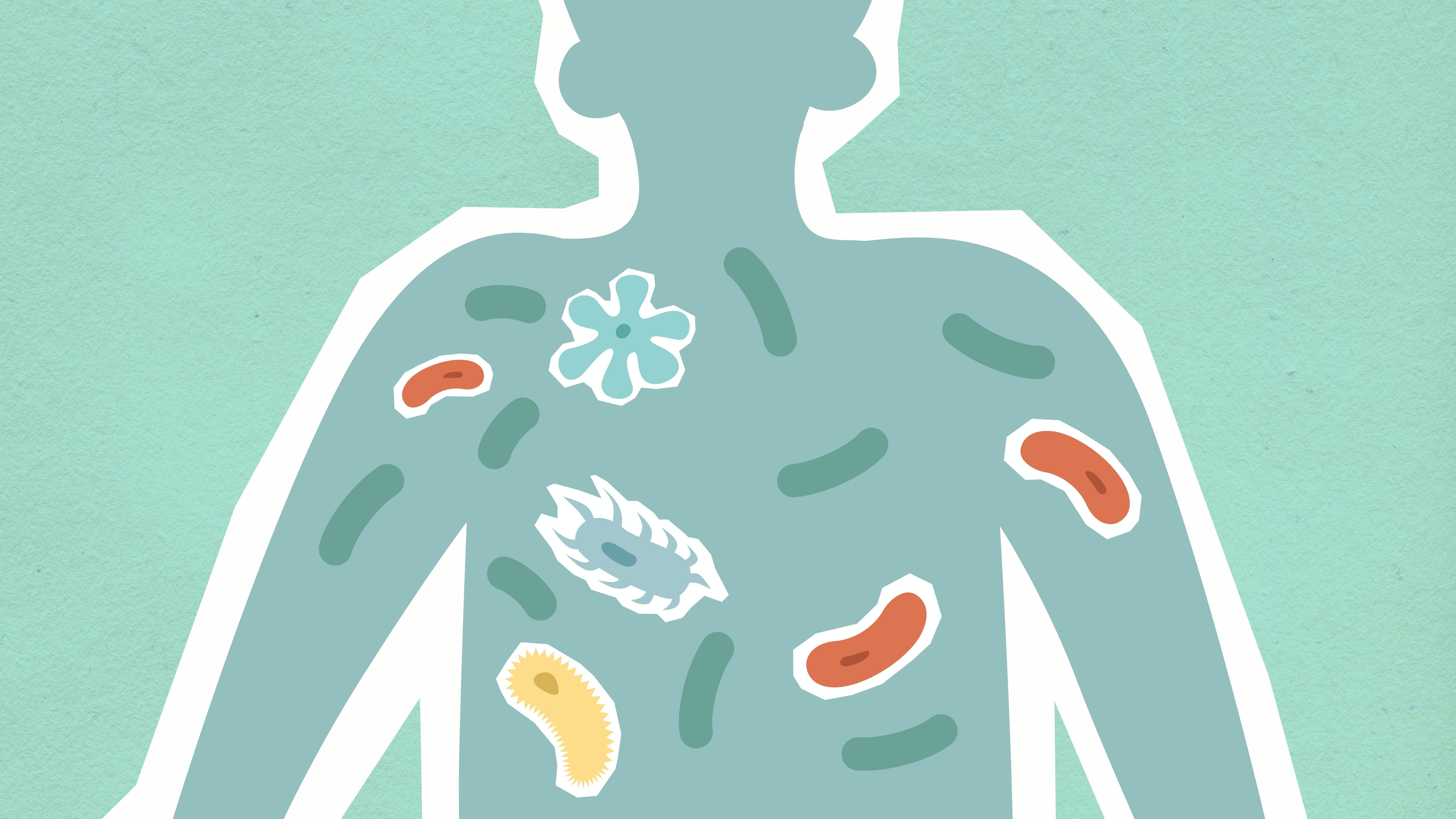 Different bacteria in the body illustration