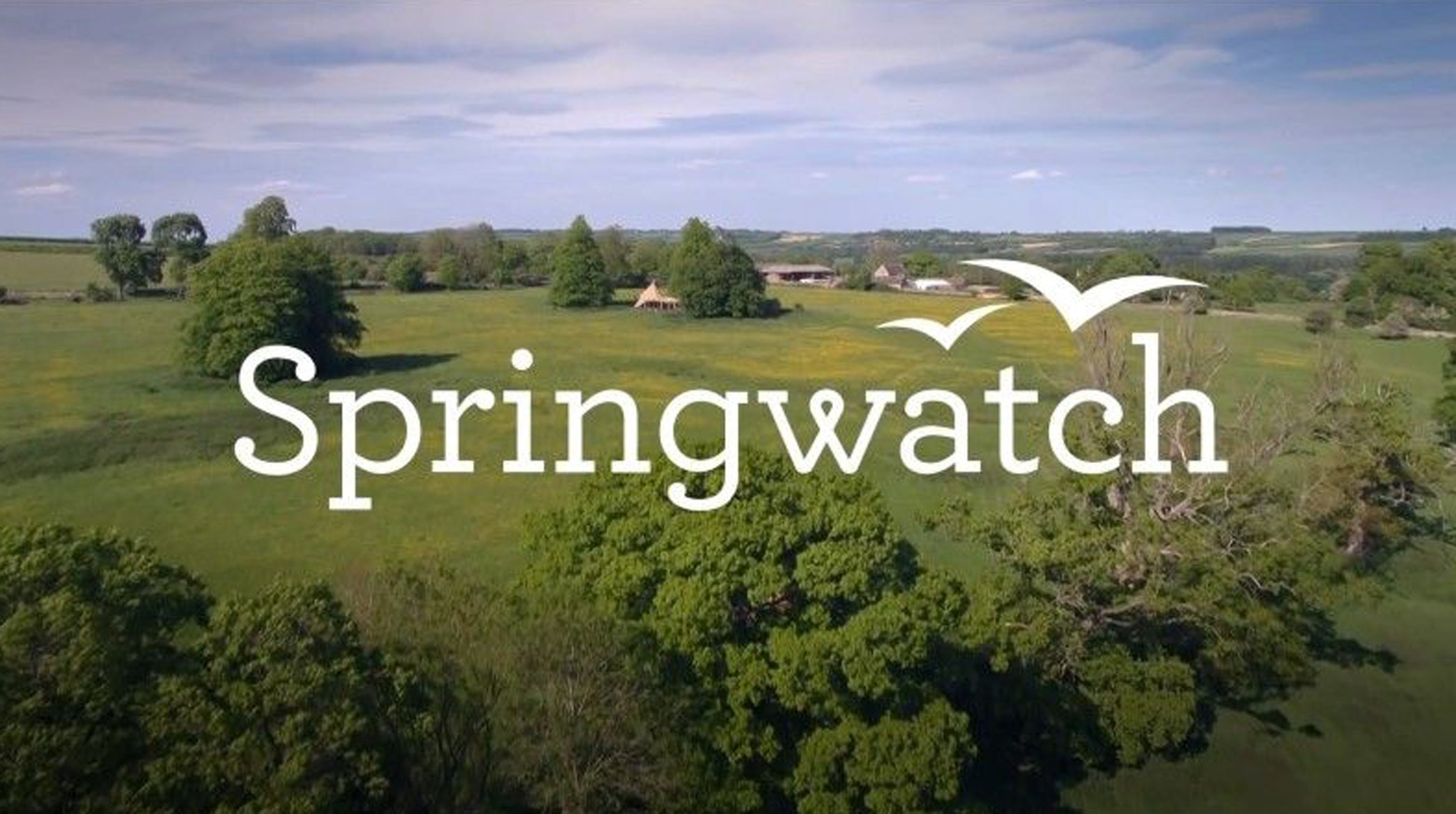 Springwatch Titles