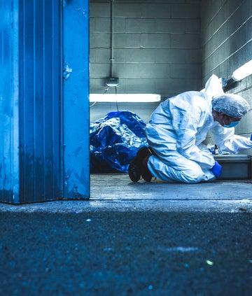 Forensics: The Real CSI - BBC OU series