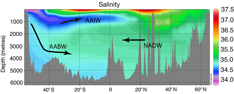 A graph illustrating seawater salinity across various ocean water sources