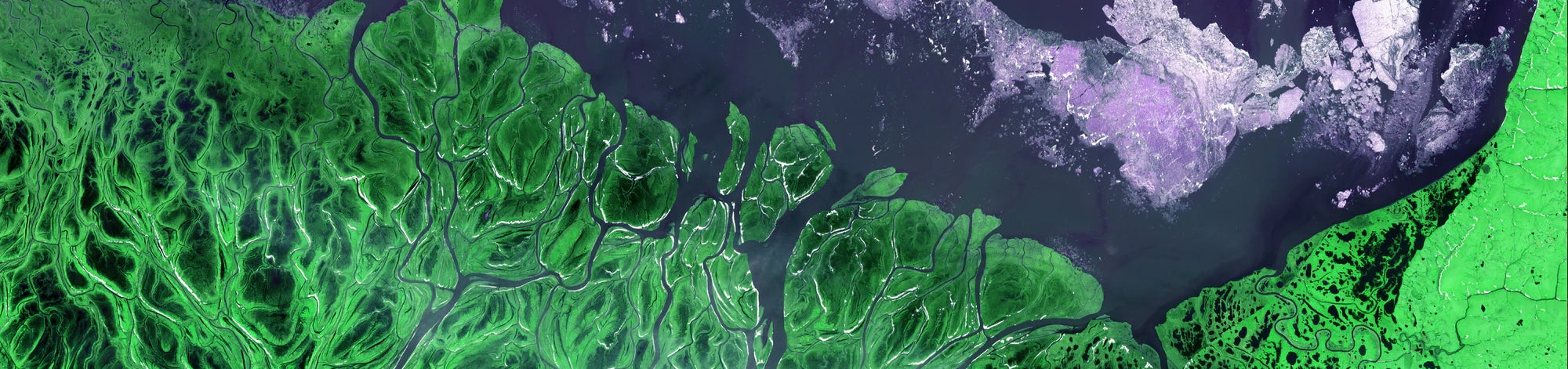 A satellite image of Earth