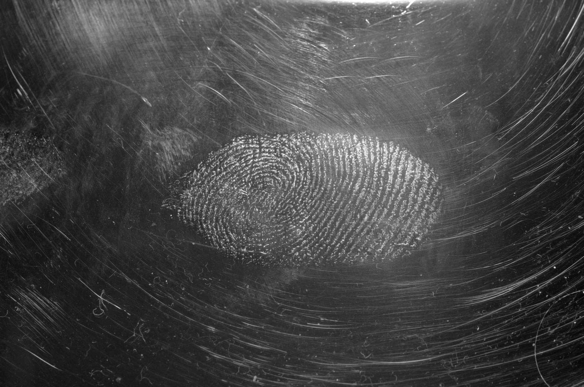 A close-up picture of a white fingerprint, possibly covered in dust to capture it