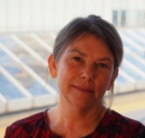 A photograph of Professor Marie Gillespie