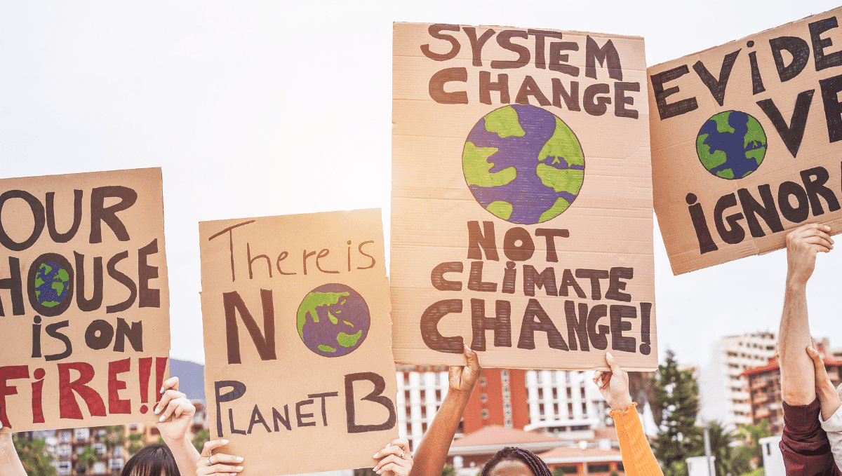 Climate change protest placards with slogans saying 'there is no planet b' and 'system change not climate change'