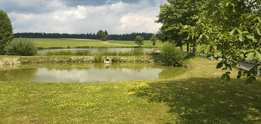 RealUXCamp 2019 - Znětínek