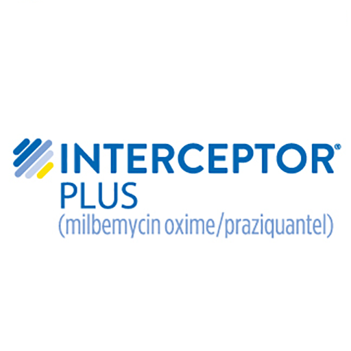 Interceptor-Plus-Logo