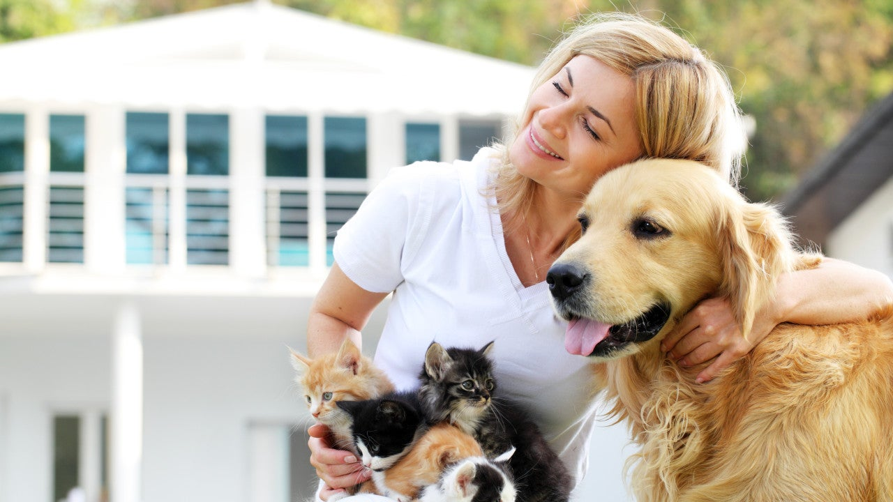 Woman with a whole bunch of pets