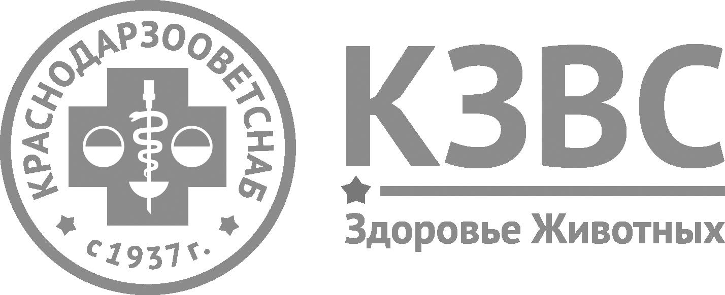 logo KZVS-gray