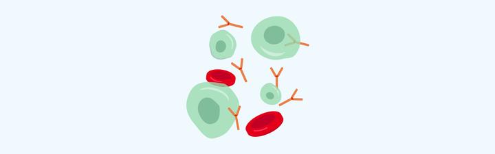 illustration myeloma